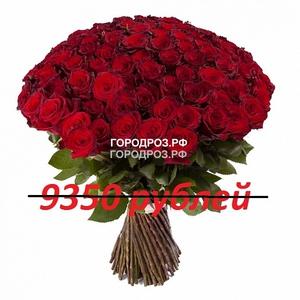 Букет из 85 красных роз
