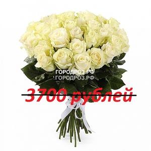 Букет из 37 белых роз