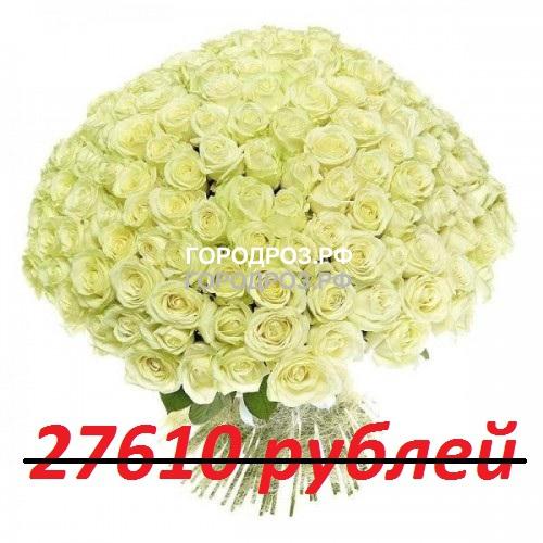 Букет из 251 белой розы