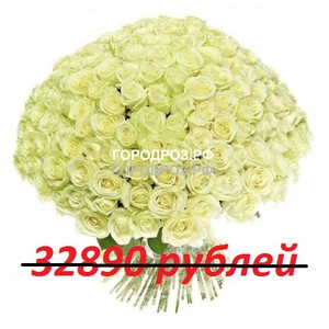 Букет из 301 белой розы