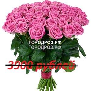 Букет из 39 розовых роз