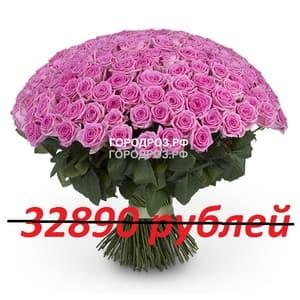 Букет из 301 розовой розы