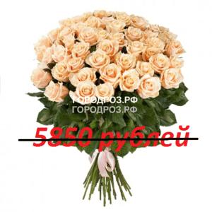 Букет из 65 нежно-розовых роз
