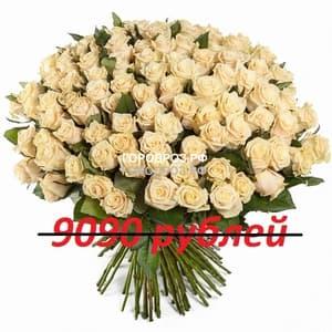 Букет из 101 нежно-розовой розы