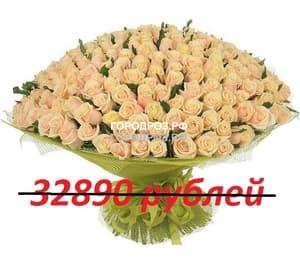 Букет из 301 нежно-розовой розы