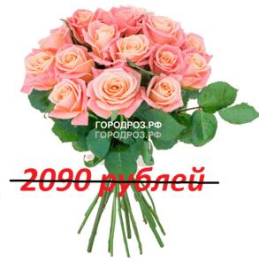 Букет из 19 персиковых роз