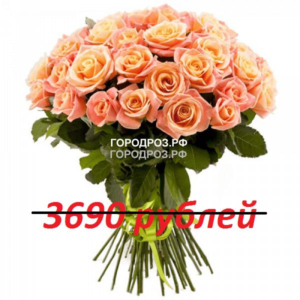 Букет из 41 персиковой розы