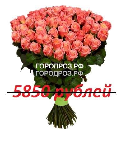 Букет из 65 персиковых роз