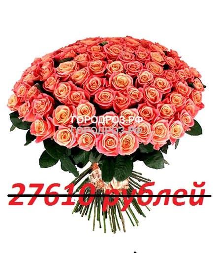 Букет из 251 персиковой розы