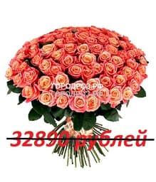Букет из 301 персиковой розы