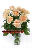 Букет из 9 кремовых роз