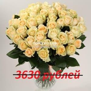 Букет из 33 кремовых роз