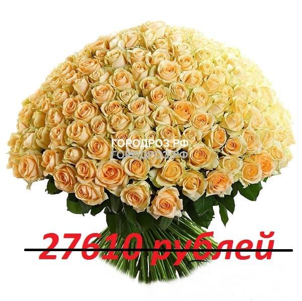 Букет из 251 кремовой розы