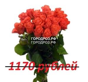 Букет из 13 коралловых роз
