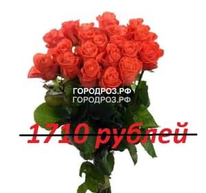 Букет из 19 коралловых роз