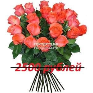 Букет из 25 коралловых роз