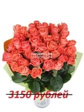 Букет из 35 коралловых роз