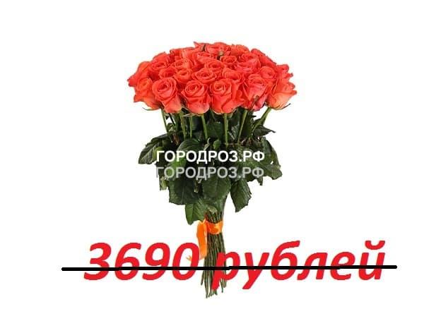 Букет из 41 коралловой розы