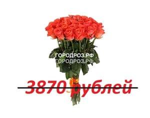 Букет из 43 коралловых роз
