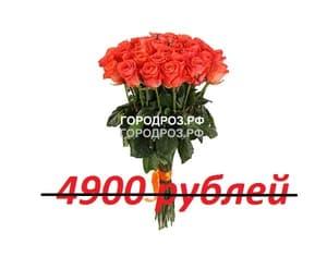 Букет из 49 коралловых роз