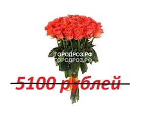 Букет из 51 коралловой розы