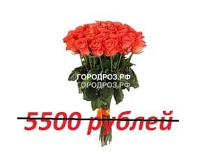 Букет из 55 коралловых роз