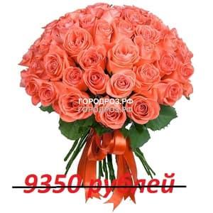 Букет из 85 коралловых роз