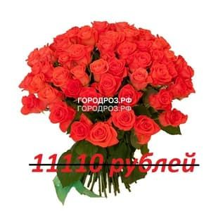 Букет из 101 коралловой розы