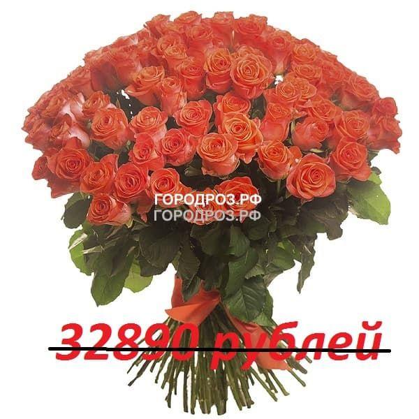 Букет из 301 коралловой розы