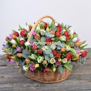 Большая корзина разноцветных тюльпанов