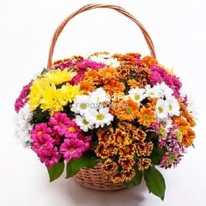 Корзина с хризантемами кустовыми микс 2
