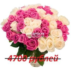 Букет из 47 розовых и белых роз