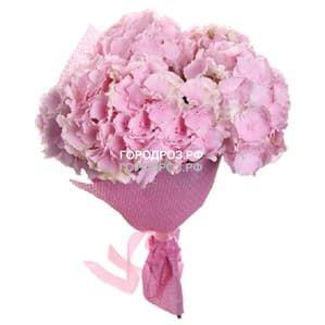 Букет из 3 розовых Гортензии