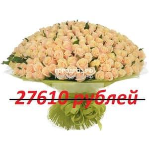 Букет из 251 нежно-розовой розы