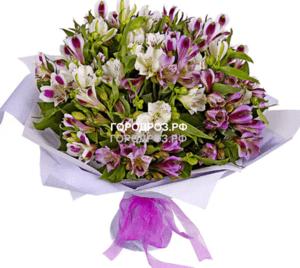 Букет из 39 фиолетовых альстромерий
