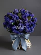 Букет из 35 фиолетовых Гиацинтов