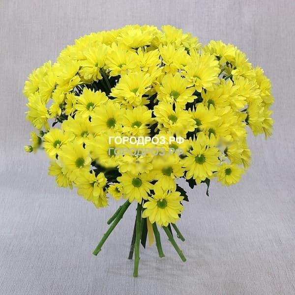 Букет из 19 желтых кустовых хризантем