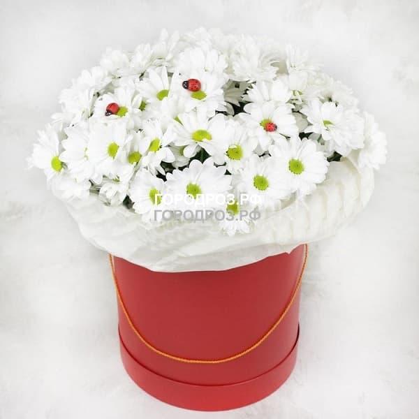 Белые кустовые хризантемы в шляпной коробке