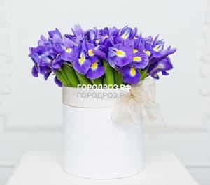 Фиолетовые ирисы в шляпной коробке