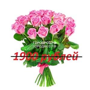 Букет из 19 розовых роз