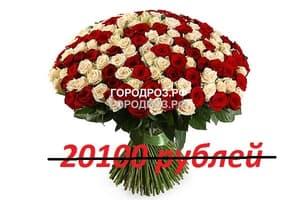 Букет из 201 красной и белой розы