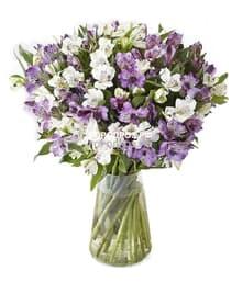 Букет из 51 фиолетовой альстромерии