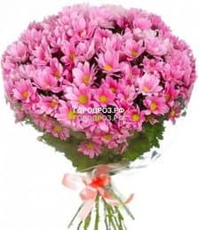 Букет из 19 розовых кустовых хризантем