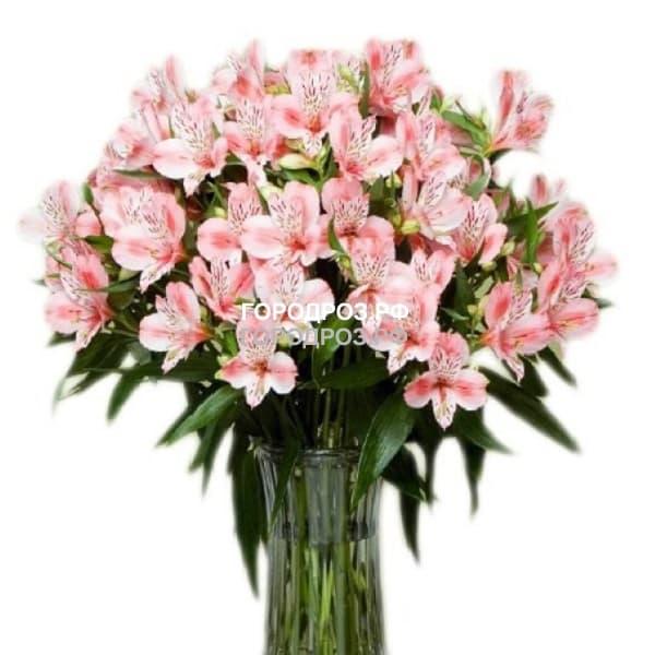 Букет из 29 розовых альстромерий