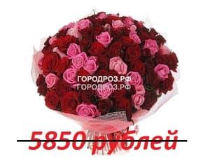 Букет из 65 красных и розовых роз
