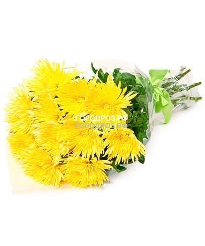 Букет из 35 желтых одноголовых хризантем
