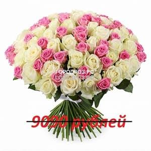 Букет из 101 розовой и белой розы