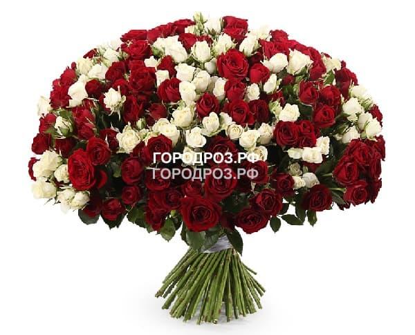 Букет из 101 кустовой розы Микс красные и белые