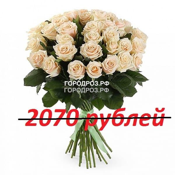 Букет из 151 нежно-розовой розы