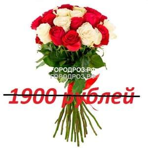 Букет из 19 красных и белых роз